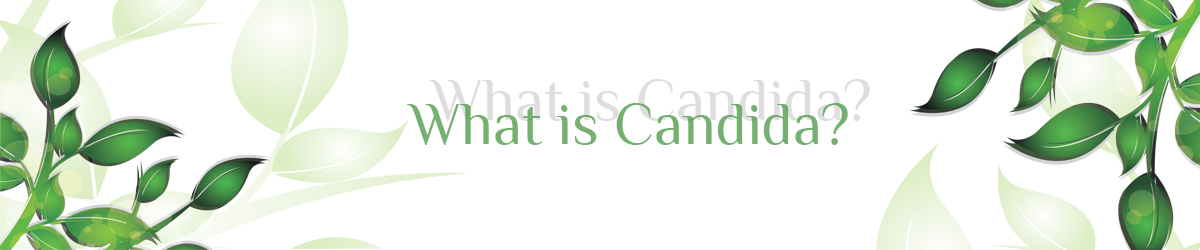 What is candida?
